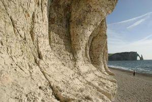 Quels sont la majorité des roches à la surface de la Terre et sont-ils Sedimentary?