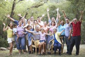 Idées Family Tree Book Cover