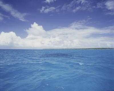 Quatre grandes différences entre l'océan et l'eau douce