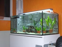 Comment à la figure le volume de liquide d'un aquarium de poissons