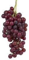 Projets de machines simples: Grape Smashers