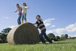 Six Caractéristiques des fortes Activités familiales