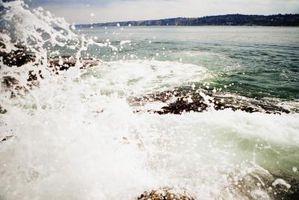 Places pour Nature Photographie à San Diego
