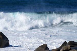 Avantages et inconvénients de Wave Energy