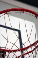 Jeux de basket-ball pour la DS