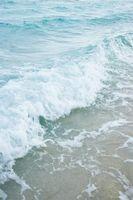 Quel type de vague Transferts Energie Mais pas d'importance?