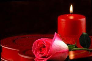 Step-by-Step Planification pour une nuit romantique