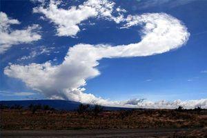 Faits sur le Mauna Loa