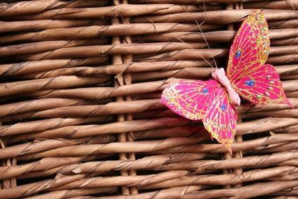 Idées d'anniversaire d'abord avec un thème papillon