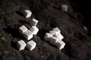 Quel type de macromolécule biologique est le glucose?