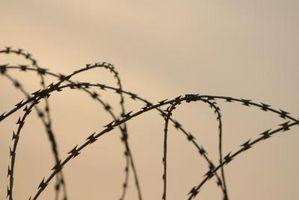 Conseils sur retour Ex-délinquants