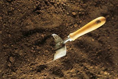 Un projet scientifique: Échantillonnage du sol pour les micro-organismes