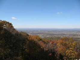 Potomac, Maryland plantes indigènes