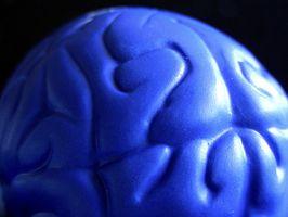 Jeux et exercices pour entraîner votre cerveau