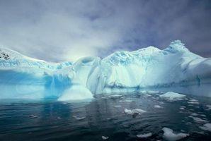 Quelles sont les causes des problèmes environnementaux mondiaux?
