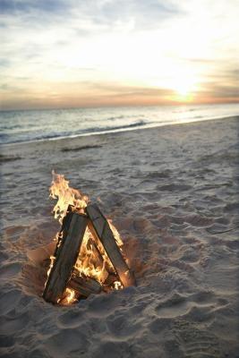 Comment faire cuire crabe sur un feu de plage