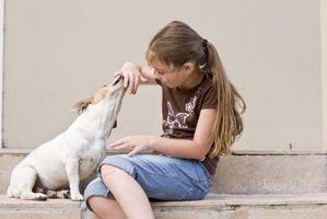 Idées de fête d'anniversaire de chien pour les enfants