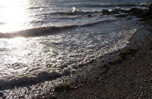 Types de Tides Ocean