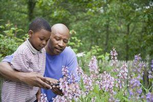 Comment fournir une structure pour un enfant avec ADD ou TDAH