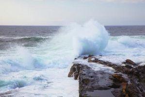 Quels sont Ocean Wave convertisseurs d'énergie?