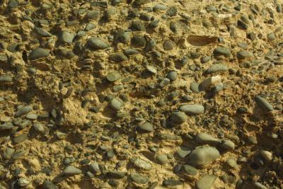 Expériences scientifiques utilisant différents types de sol