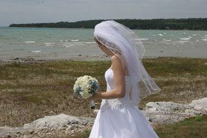 Plage Mariages dans le Détroit, Michigan Area