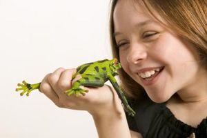 Le meilleur cadeau pour les enfants qui aiment les grenouilles