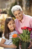Activités pour Grandmothers & Granddaughters
