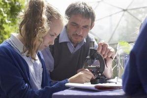 Des expériences pour Microscope un Kids