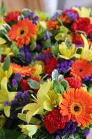 Comment envoyer des fleurs à New York pour moins