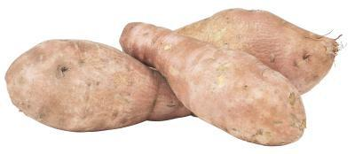Doux Activités de pommes de terre de plantes pour les enfants