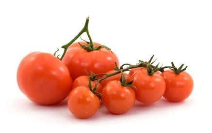 Types de tomates végétales sauvages