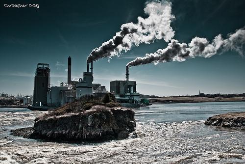 Quels sont les avantages de la surveillance environnementale?