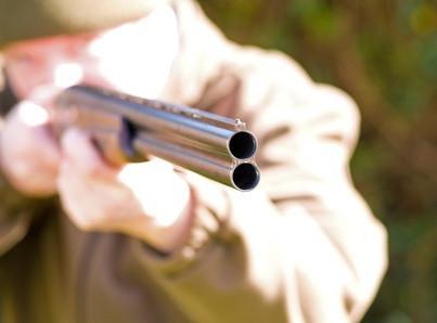 Comment Prep un nouveau fusil de chasse