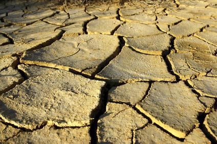 Les signes d'une sécheresse Avertissement