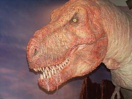Jeux de dinosaure pour tout-petits