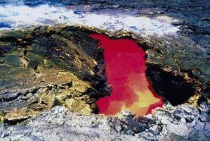Lava Composition des différents volcans