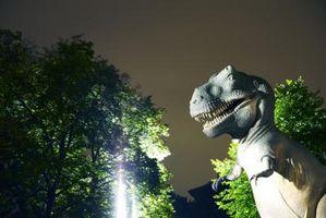 Jeux Dinosaur Land
