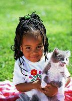 Ne chats causer des problèmes de santé chez les jeunes?