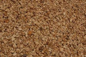 Les avantages et inconvénients de la biomasse énergie