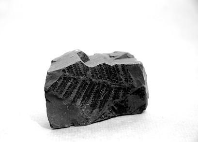 Comment faire des cristaux liquides bleuissant charbon