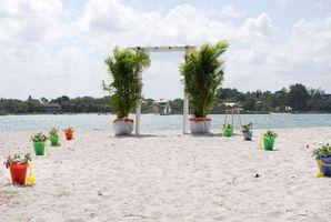 Comment planifier un mariage de plage au Texas