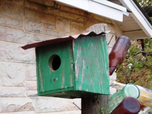 Comment construire différents types de maisons d'oiseaux