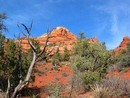 Montagnes et Déserts de l'Arizona