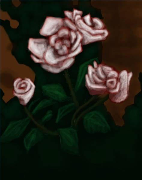 Comment peindre Roses blanches