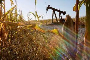 Comment convertir des cultures en biocarburants