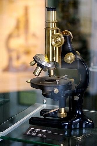 Composé Lumière Microscope Pièces & Définitions