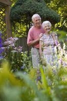 Comment aider les parents célèbrent 50 ans de mariage