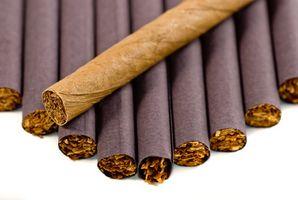 Comment reconnaître une porcelaine Cigar Humidor Antique Irish