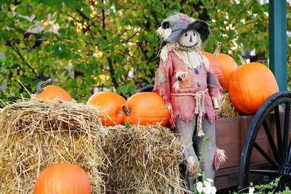 Comment rechercher Jeux pour Halloween Parties pour tous les âges